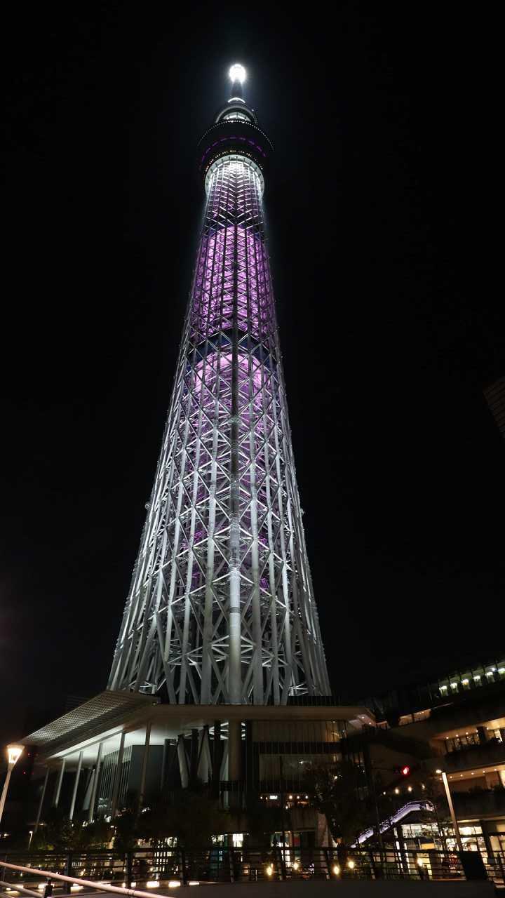 1年に1日だけ ピンクリボン 東京 スカイツリー 特別ライトアップ ライティング写真 おしあげ探検隊
